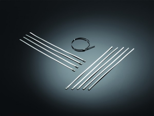 STAINLESS STEEL STRAPS 10Pcs